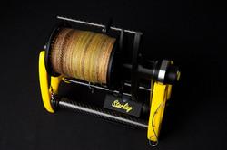 Yellow and Black Starling V30401