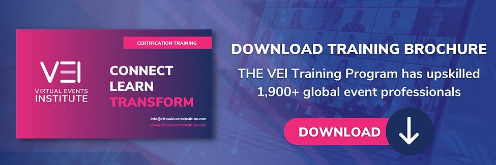 Download VEI Brochure V2.png