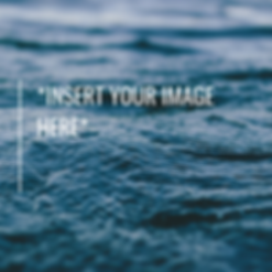 _Insert Your image here_.png