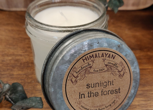 Sunlight in the Forest Soy Candle - Curiosity Jar