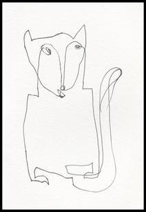 A Shy Cat