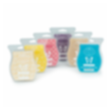 14847r1scentsybar6packfw2015.png