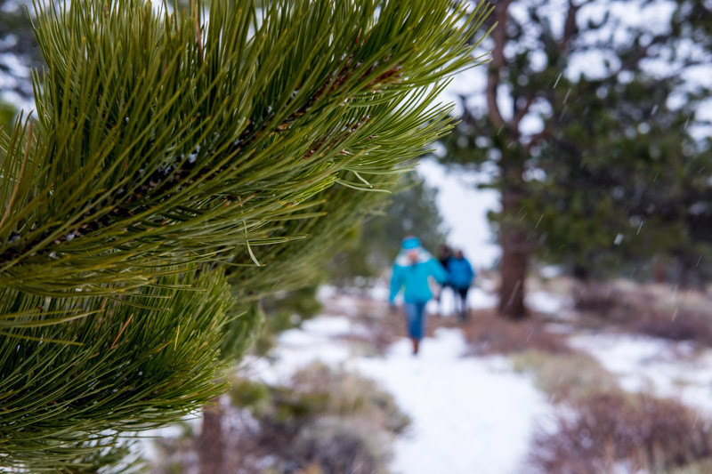 Hiking in Rocky Mountain National Park in Winter