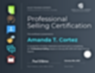 Professional Sales Certification Certifi