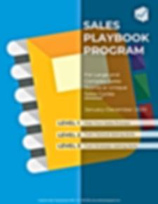 Sales PLaybook Cover PNG.png