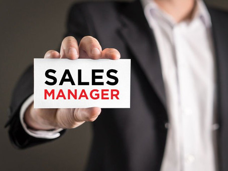 Fractional Sales Manager