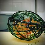 Cage en caramel vert