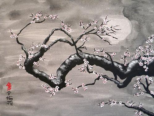 Plum Blossoms B