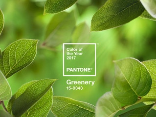 Pantone has crowned the color for 2017 as Greenery – based on its representation of new beginnings,