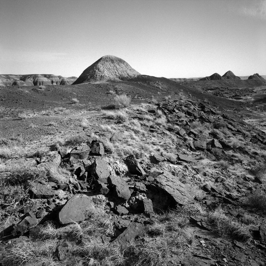 Painted Desert, Petrified Forest N.P-AZ#01