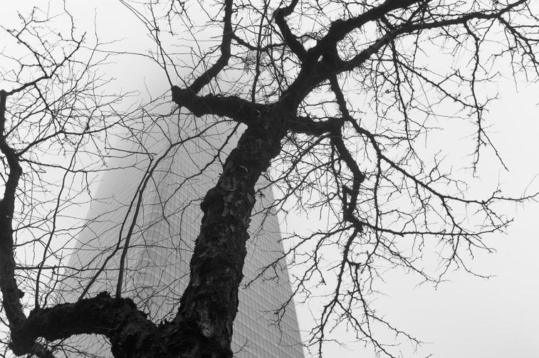 NYC#13