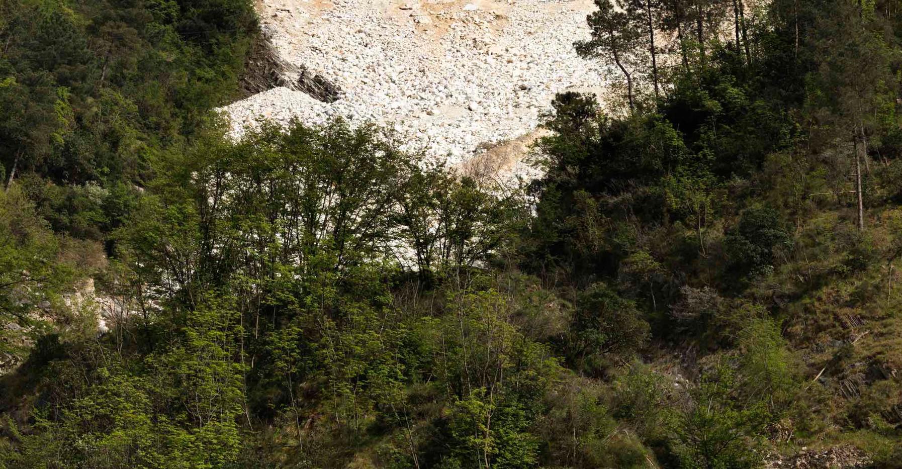 Carrara III_0186.jpg