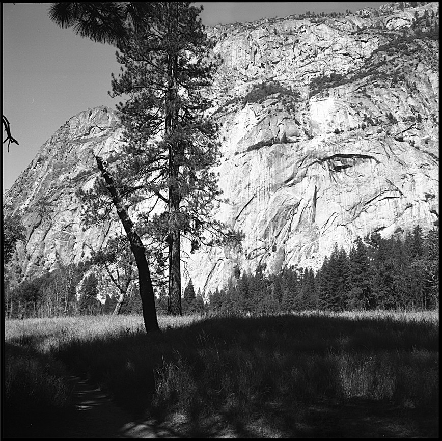 Yosemite Valley#04