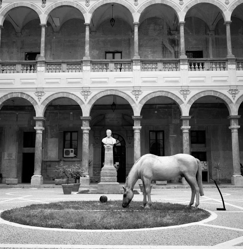 Palermo#03