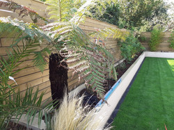 Re-landscaping - New Milton