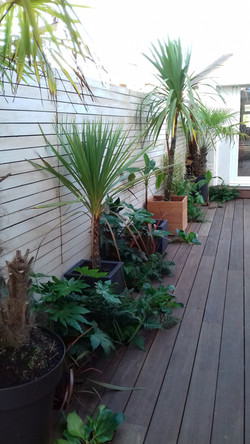 Fencing/decking - Bournemouth