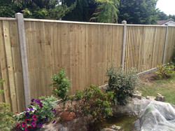Fencing - Canford Heath after