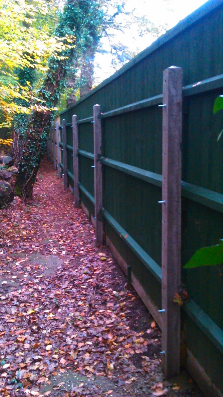 Fencing - Canford Heath