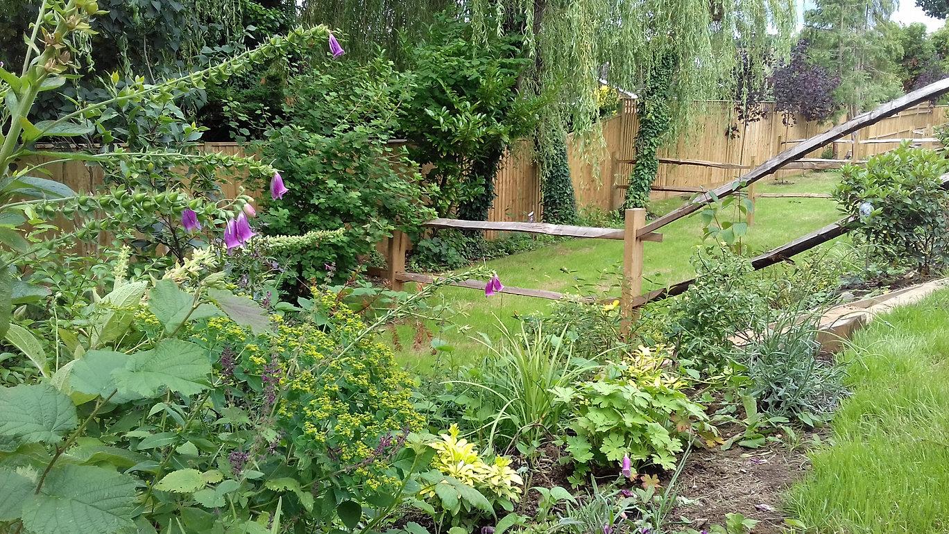 Landscape design, garden maintenance Bournemouth - BH ...