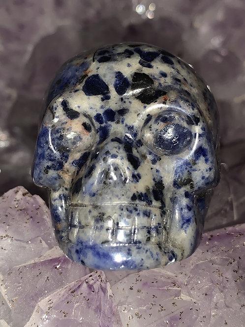 Grote schedel