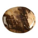 versteend-hout-steen-plat-gepolijst.jpg