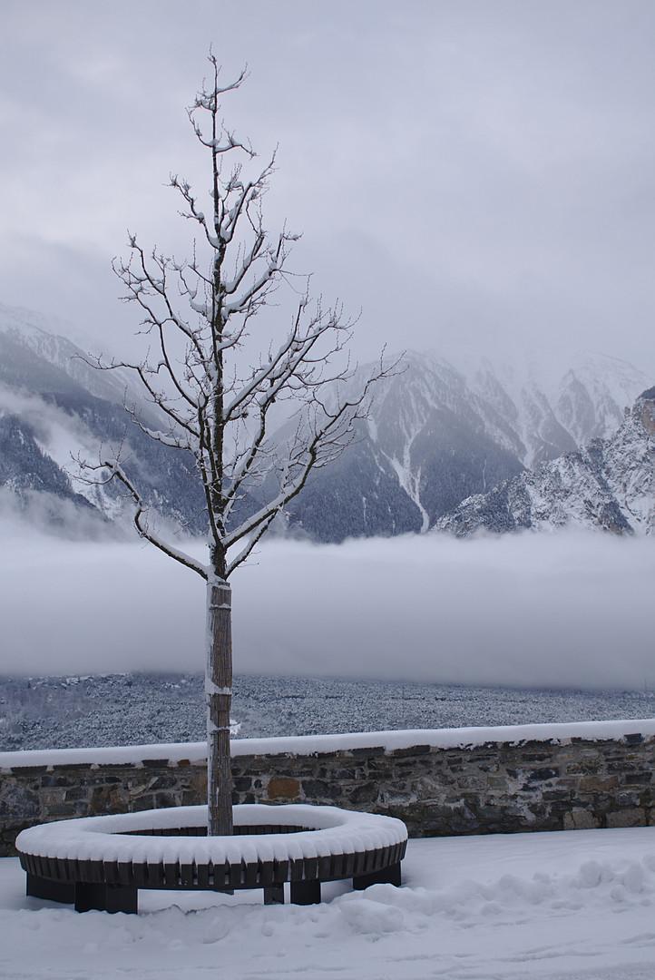 Nebelschwaden über dem Pfynwald von Leuk aus