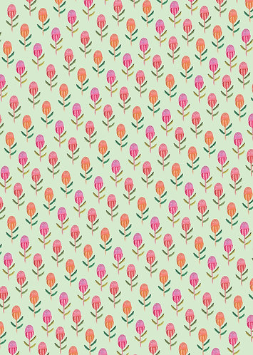 Wholesale Banksia Wrapping paper RRP $7.00