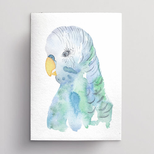 Wholesale Blue Budgie Greeting Card RRP $7