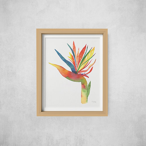 Bird of Paradise Flower Print