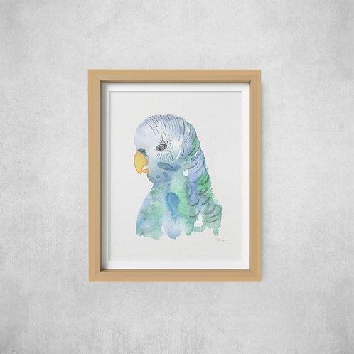 Wholesale Blue Budgie Print RRP $40