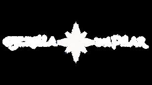 estrella del pilar vector blanco-1.png