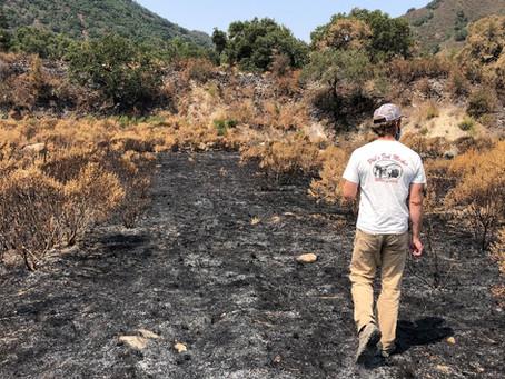 Carmel Fire - August 2020