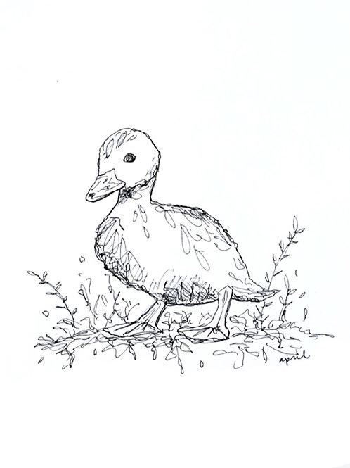 Duck Duck Print
