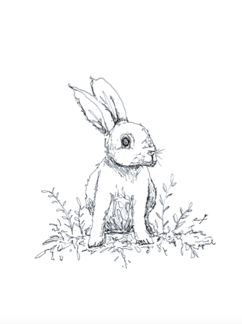 Bunny Rabit Print