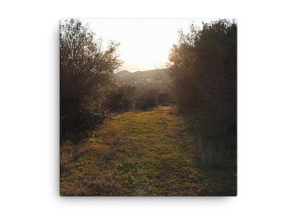 Homestead Albania Sun Soaked Trail Canvas Print