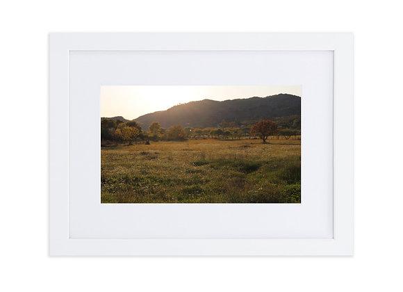 Sunset Field Matte Paper Framed Poster With Mat