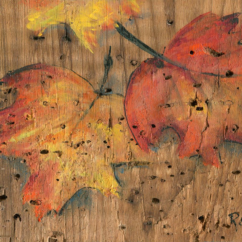 206 Maple Leaf #2.jpg