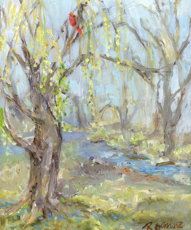 188 Creek w Cardinal.jpg