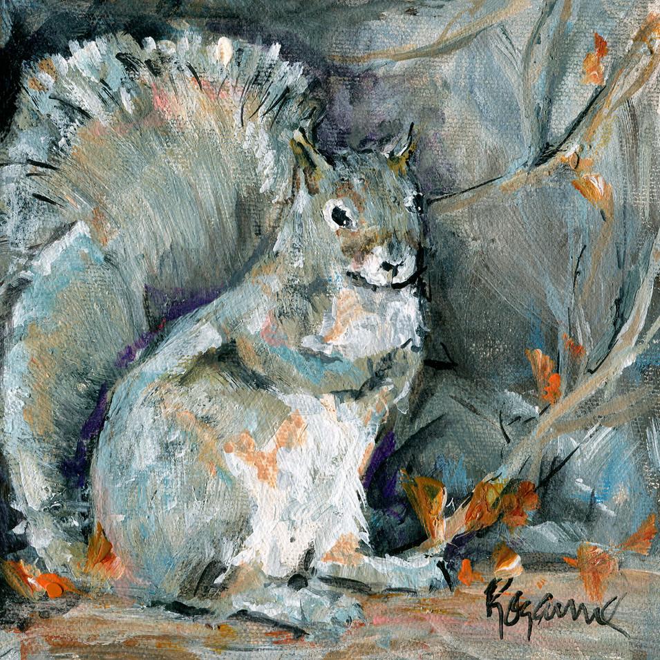 212 Gray Squirrel 6x6.jpg