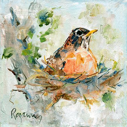 238 Robin on her Nest.jpg