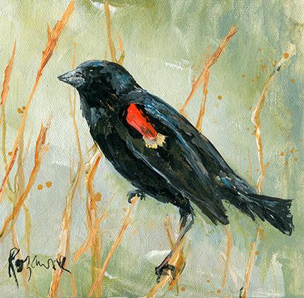 278 red wing blackbird.jpg