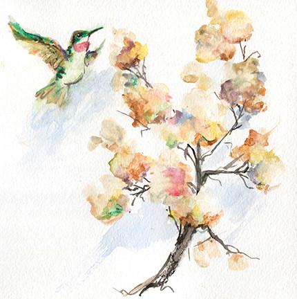 204 Humming Bird on Hydrangea.jpg