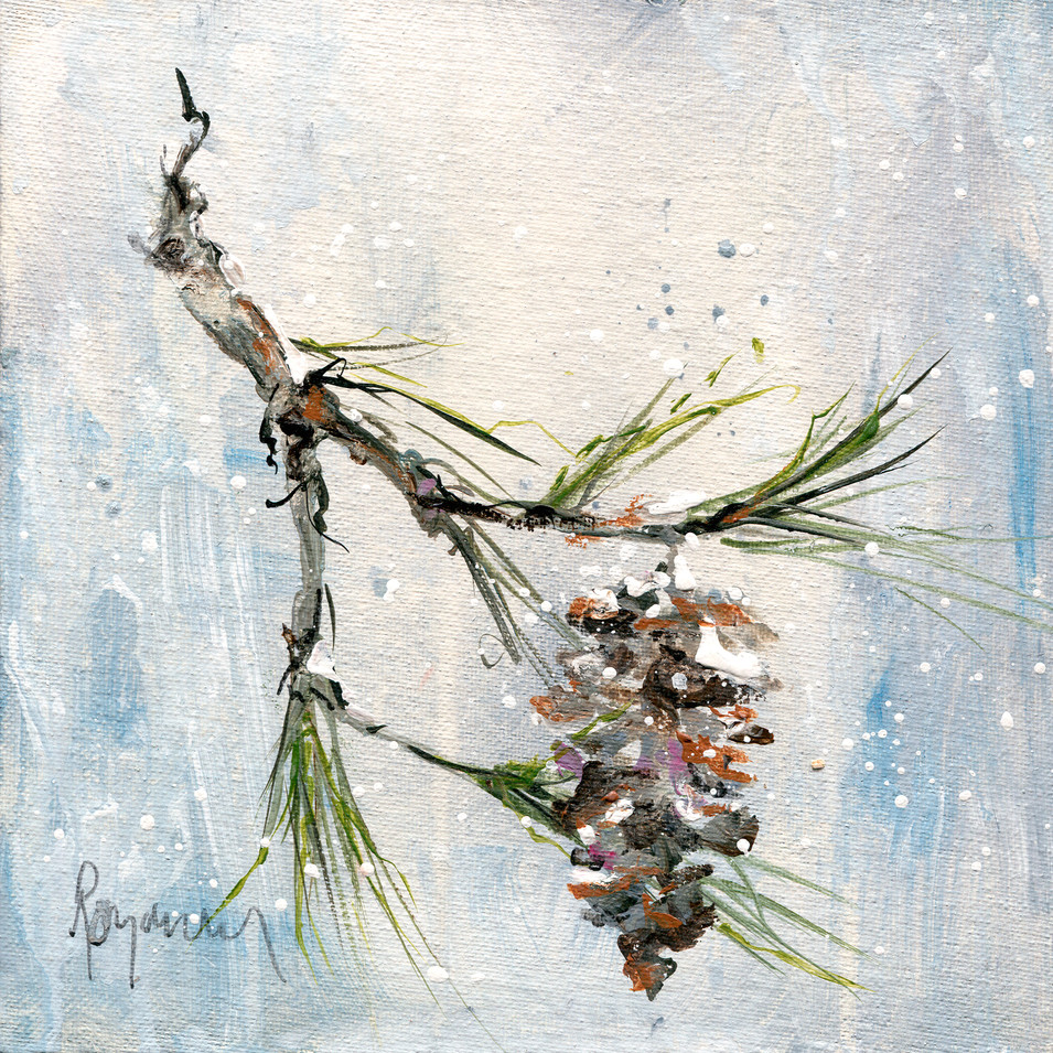 214 pinecone in winter 8x8.jpg