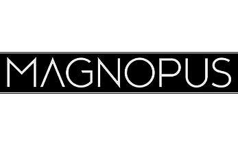 magnopus