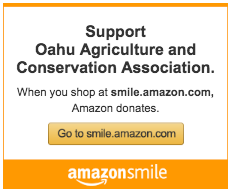 Shop on Amazon? Donate at no cost to you!