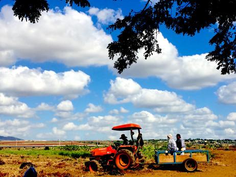 Ho Farm-Farmers 11_2016 copy.jpg