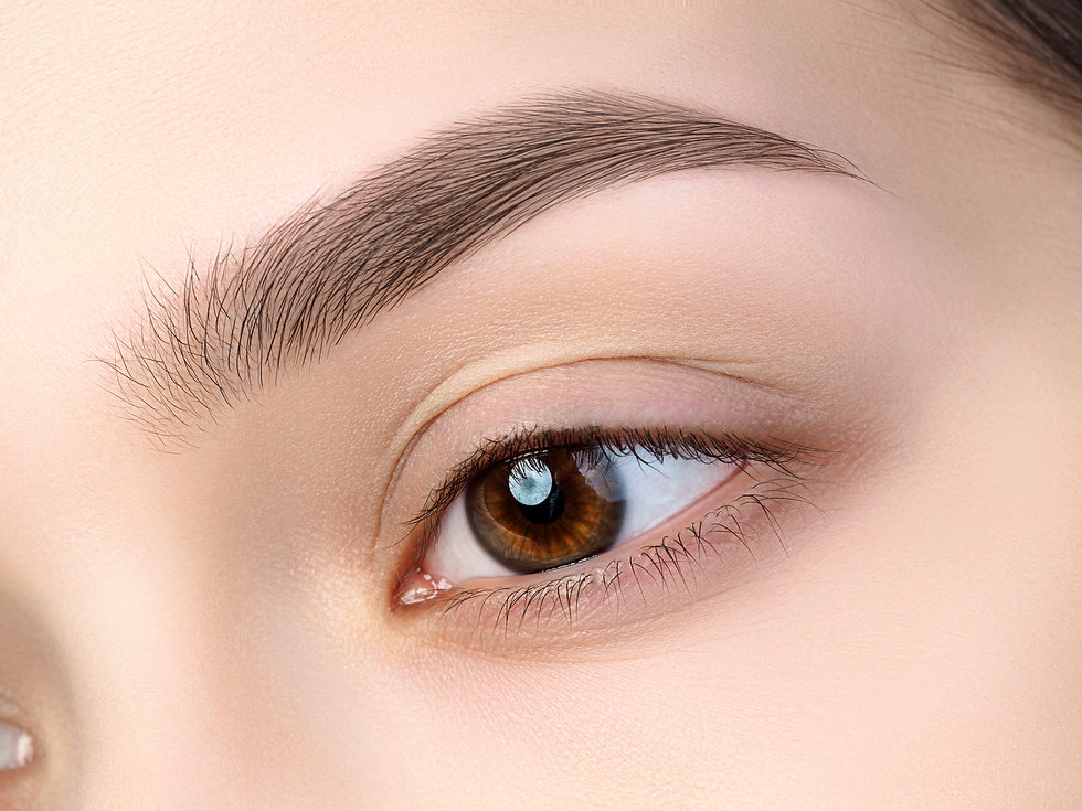 Close up view of beautiful brown female eye. Perfect trendy eyebrow. Good vision, contact