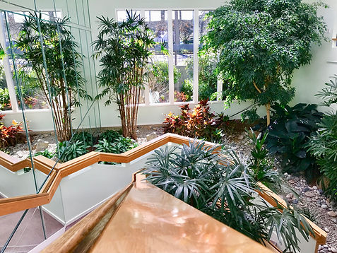 Picture of the Clubhouse Atrium showing the indoor garden.