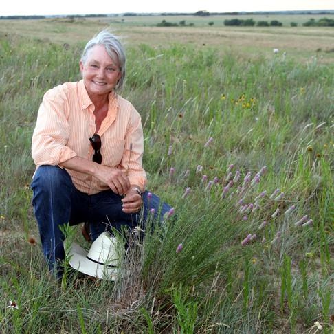 Grazing to Improve Grassland
