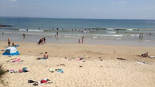 Beach Rescues.jpg